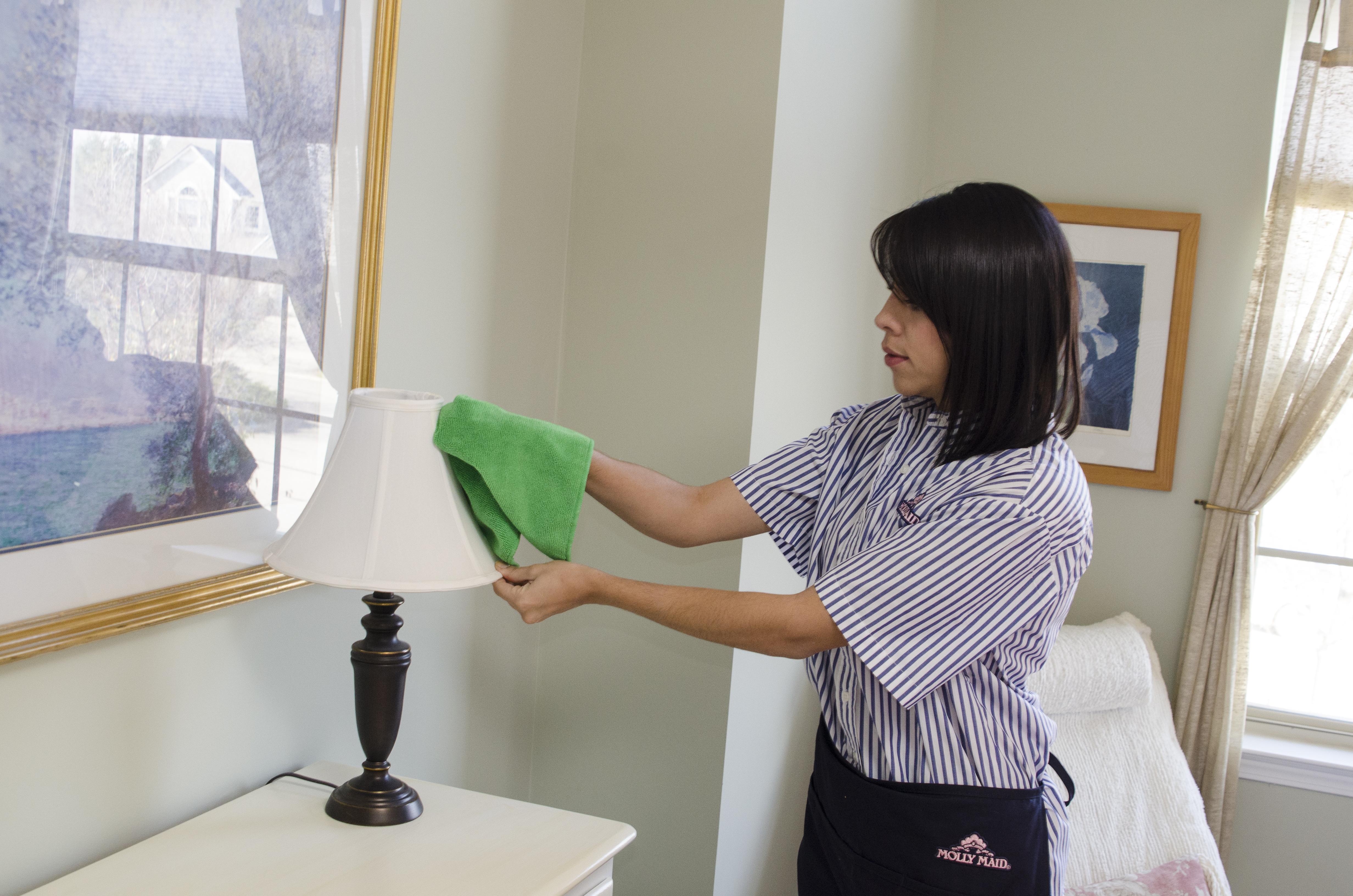 вариант чем протирать мебель чтобы не садилась пыль натуральные материалы тоже